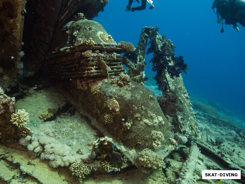 На фото: груз затонувшего на шарк-иоланде корабля - сантехни.